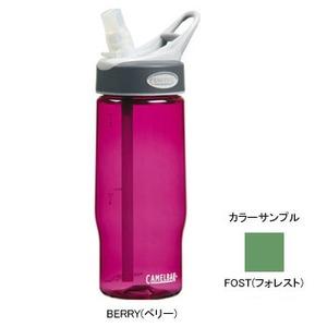 CAMELBAK(キャメルバック) ベターボトル0.5L 0.5L FOST(フォレスト)