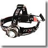 ZEXUS(ゼクサス) ZX-310