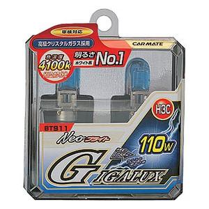 GIGALUX(ギガルクス) Neoブライト H3C 55W