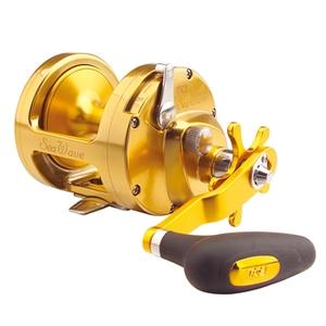 TICA(ティカ) SEA WAVE SWP16WH(G) ゴールド