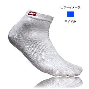 injinji(インジンジ) パフォーマンス ミニクルー L ロイヤル