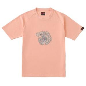 FJALL RAVEN(フェールラーベン) トランスアクアTシャツ L 25(ライトピンク)