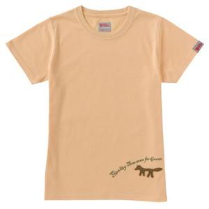 FJALL RAVEN(フェールラーベン) トランスアクアレディースTシャツ S 30(イエロー)