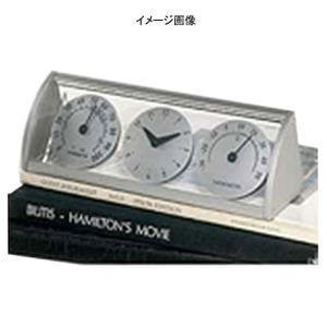 ADESSO(アデッソ) 温湿度計クロック TC-300 シルバー