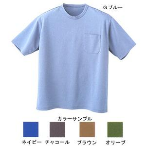 プロモンテ(PuroMonte) トリプルドライ半袖丸首Tシャツメンズ