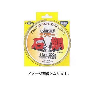 ゴーセン(GOSEN) テクミー石鯛100m GS-326K 磯用その他