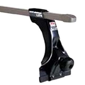 カーメイト(CAR MATE) ベーシックステーセット(Dスペースギア) INSDG ルーフ用フット・ステー