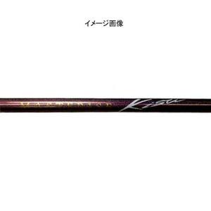 ダイワ(Daiwa)サーフスタンドV1 マスタライズキス