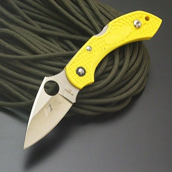 Spyderco(スパイダルコ) ドラゴンフライ2 ソルト 直刃 C28PYL2 フォールディングナイフ