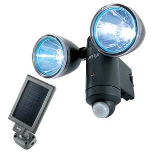 【クリックで詳細表示】ライテックス(RITEX)1W×2 LEDソーラーライト