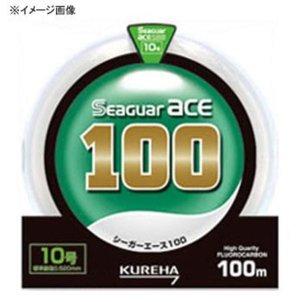 クレハ(KUREHA) シーガーエース 100m 単品 NA1001.7 ハリス100m以上