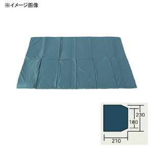 ogawa(小川キャンパル) グランドマット ポルヴェーラ34用 3884 テントインナーマット