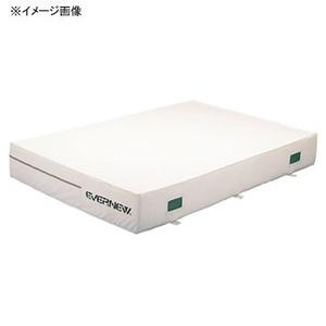 【送料無料】EVERNEW(エバニュー) 交換袋 EGD142用 EGD152
