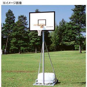 【送料無料】EVERNEW(エバニュー) バスケットゴール サンダンス2 EKE440