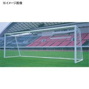 ダンノ(DANNO) ジュニアサッカーネット ジュニアサッカー150 1対 D6710W