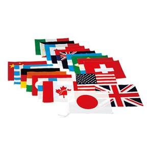 EVERNEW(エバニュー) 万国旗 20 EKA381