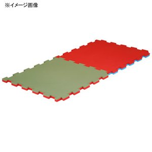 EVERNEW(エバニュー) ジョイント畳マット 500(ミドリxアカ) EKR025