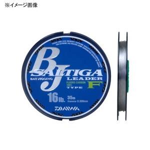 ダイワ(Daiwa) ソルティガ BJリーダー タイプF 04625645 ジギング用ショックリーダー