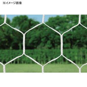 【送料無料】トーエイライト 一般サッカーゴールネット TOE-B3773