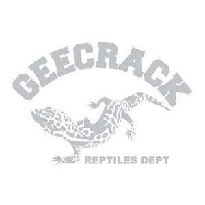 GEECRACK(ジークラック)ロゴステッカーヤモリ