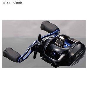 ダイワ(Daiwa)13スマック 100SH−L