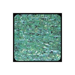 ホッツ(HOTS) アワビワークス アワビシート ニュージーランド XL グリーン