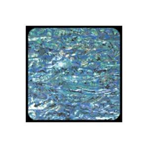 ホッツ(HOTS) アワビワークス アワビシート ニュージーランド XL ブルー