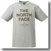 THE NORTH FACE(ザ・ノースフェイス) RANGER TEE Men's