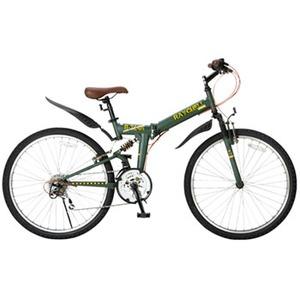Raychell(レイチェル) R-314N 17075 26インチ変速付き折りたたみ自転車