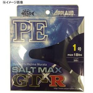 サンヨーナイロン ソルトマックス GT-R 200m 2.5号/42lb