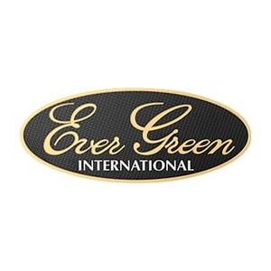 エバーグリーン(EVERGREEN) エバーグリーン3Dステッカー ゴールド