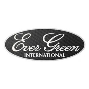 エバーグリーン(EVERGREEN) エバーグリーン3Dステッカー シルバー