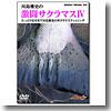 オリジナルDVD 激闘サクラマスIV DVD約72分