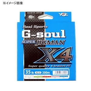 YGKよつあみリアルスポーツ G−soul スーパージグマン X4 300m