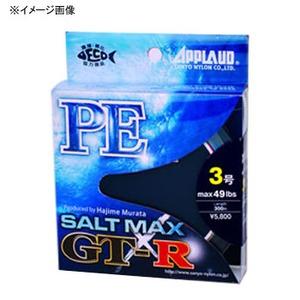 サンヨーナイロン ソルトマックス GT-R PE 200m 2号/35lb