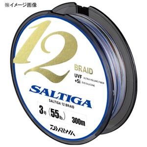 ダイワ(Daiwa) ソルティガ 12ブレイド 300m 04626000 ジギング用PEライン