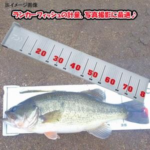 ダイワ(Daiwa) ランカースケール 04200210 メジャー