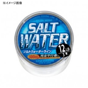 ラインシステム SALT WATER(ソルトウォーター) 300m L4008E