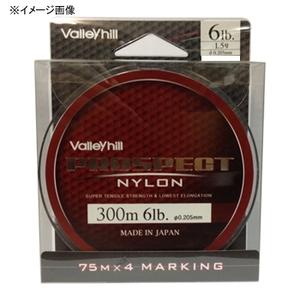 バレーヒル(ValleyHill) プロスペクトナイロン 300m 12lb