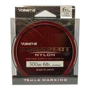バレーヒル(ValleyHill) プロスペクトナイロン 300m 6lb