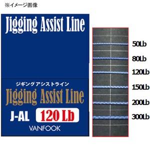 ヴァンフック(VANFOOK) ジギングアシストライン 6m J-AL