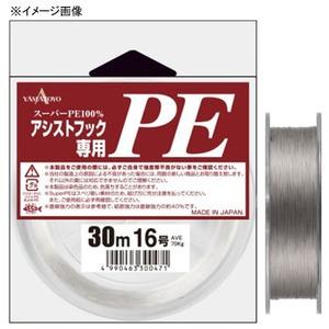 ヤマトヨテグス(YAMATOYO)アシストフック専用PE 30m