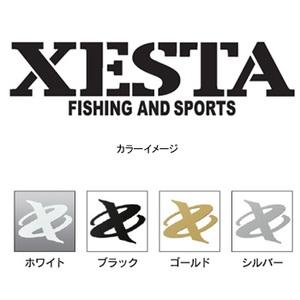 ゼスタ(XeSTA)カッティングステッカー(ステンシル)