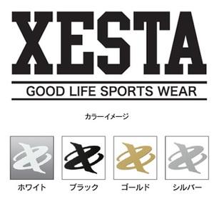 ゼスタ(XeSTA)カッティングステッカー(GS)