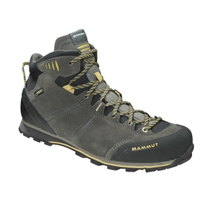 【送料無料】MAMMUT(マムート) Wall Guide Mid GTX(R) Men's 7.5/26.0cm 0951(barkxtuff) 3020-04871