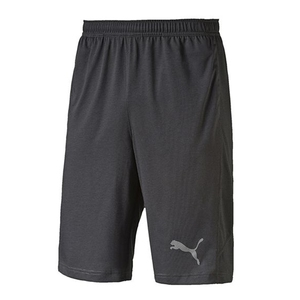 PUMA(プーマ) DRI-RELEASE 10ショーツ Men's M 04(MEDIUM GRAY HEATHER) 514430