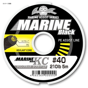 Fishing Fighters(フィッシング ファイターズ) マリンブラック ケプラーコア 5m FF-MALK015