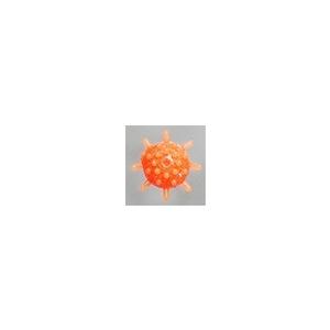 ヤマシタ(YAMASHITA) マシュマロボール アカムツSP L オレンジ