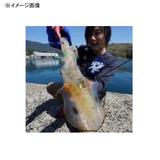 コスミック出版 エギング最強攻略 8 ソルトウォーター・本