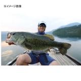 内外出版社 DVD 青木大介 ディーズスキャンダル5 フレッシュウォーターDVD(ビデオ)